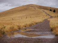 Morning runners and walkers ascended Waterworks Hill in Missoula, MT on Sept. 20, 2017. Rain the past week ended a summer of drought and fire that ravanged Eastern Montana.